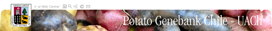 Potato Genebank Chile